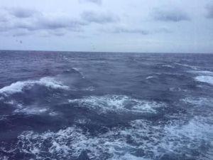 Dawnetta rough seas