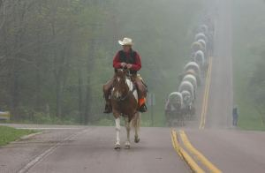 """Howdy"" VanSickle leads the wagon train on its journey through an early morning fog.The 36th annual National Road Festival got off to an early start Friday morning as they left Addison, Somerset County and headed west along Route 40 towards Fayette County."